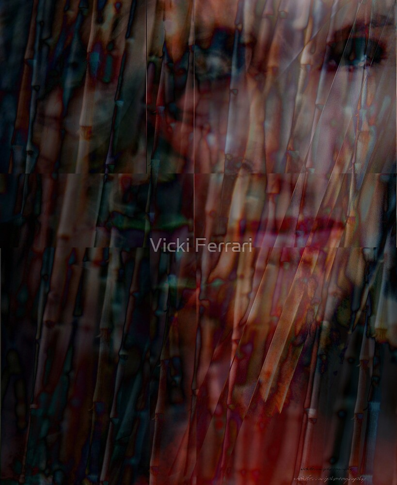 Transformed © Fractured © Vicki Ferrari Photography by Vicki Ferrari
