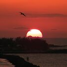 Bahama Sunset by Ron Griggs