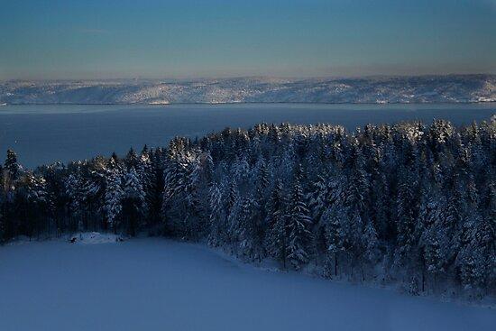 winter fjord by Veronica Ek