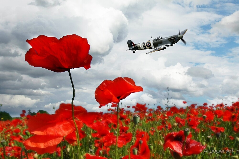 Spitfire Over The Poppy by Airpower Art