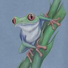 Red-Eyed Tree Frog by Lars Furtwaengler