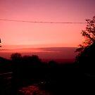 Stunning Winter Sunset in Devon by Alice Oates