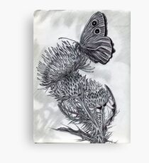 A Thistle and Butterfly Canvas Print