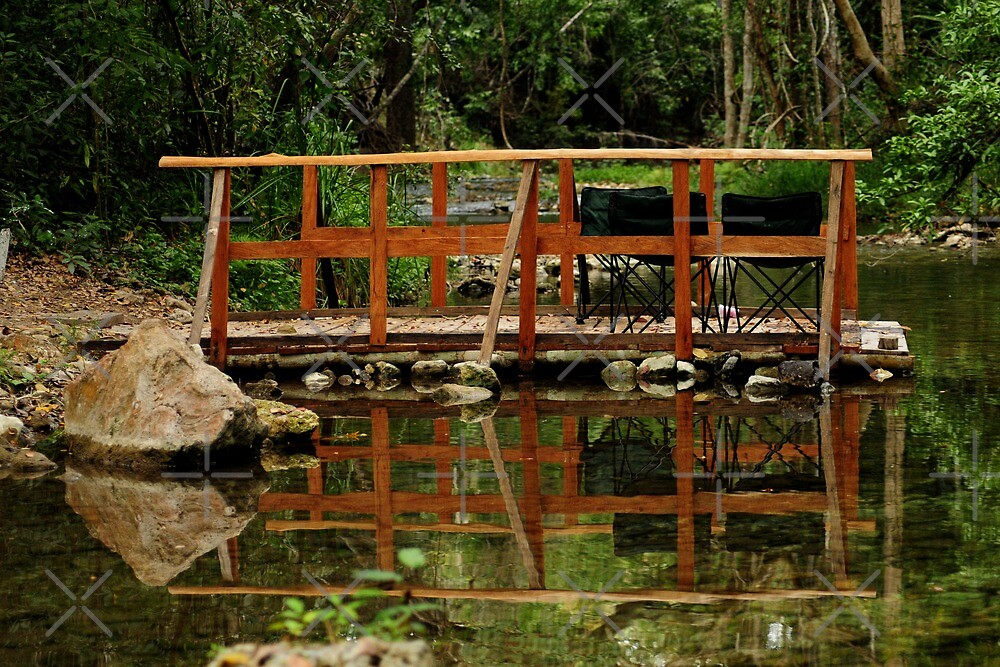 The Deck, a jungle view by MaluC