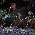 Hahn und Hühner in der Nacht von little1sandra