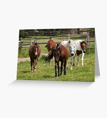All Together - NNEP Ottawa, ON Greeting Card