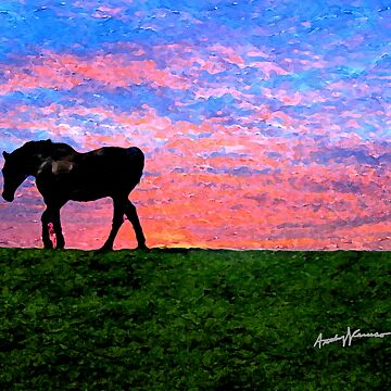 Black Horse at Sunset by anthonycaruso
