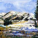 High Sierra Snow  Melt by Randy Sprout