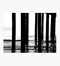 Sea Stilts Photographic Print