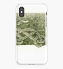 The Green Tree Snake iPhone Case/Skin