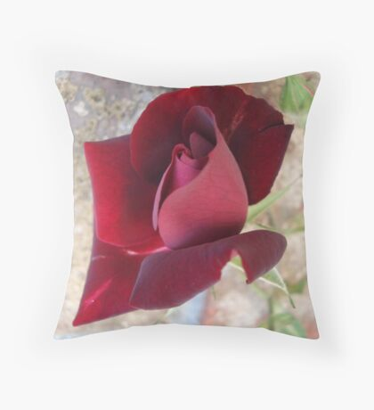 Ed's Rose Throw Pillow