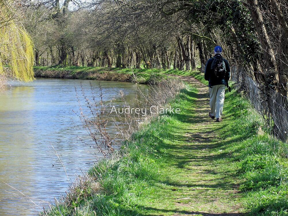 Waterways and pathways by Audrey Clarke