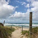Path to Coolum beach by Annie Smit