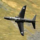Hawk jet by Stephen Kane