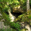 Sunlight waterfall by RodneyCleasby