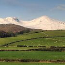 The Fells in January by Jamie  Green