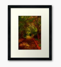 George's Pathway Framed Print