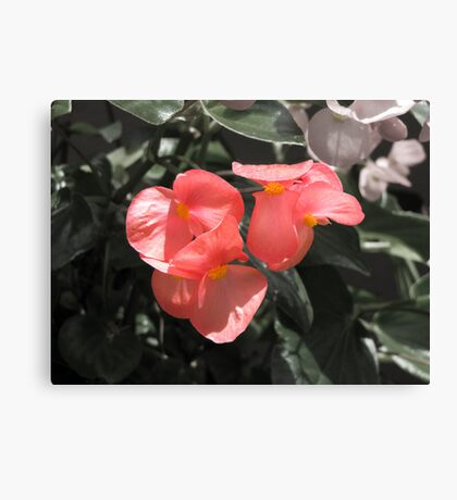 Pretty Lil' Flowers Canvas Print