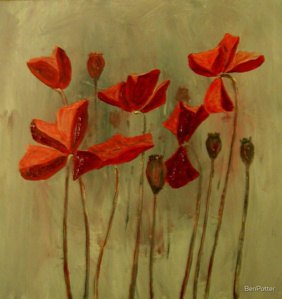 Red Poppy Field by BenPotter