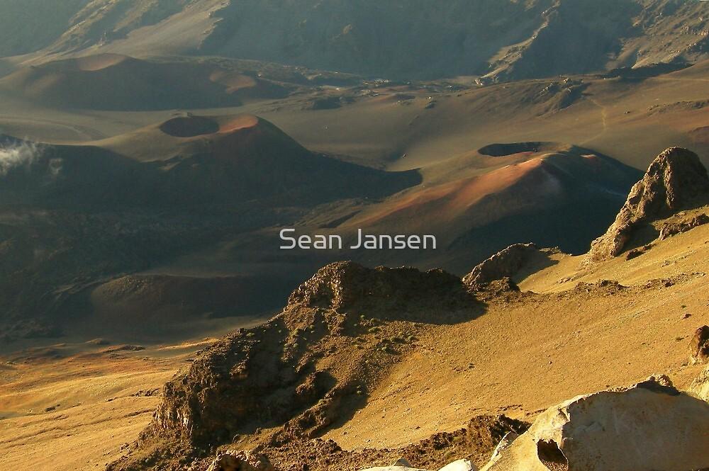 Cone Heads by Sean Jansen