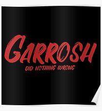 Garrosh did nothing wrong (World of Warcraft) Poster
