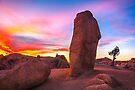 Joshua Tree Sunset Jumbo Rocks by photosbyflood