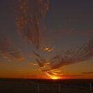 Nambung Sunset by Peter Rattigan