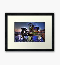 Dolphins in Baltimore Framed Print