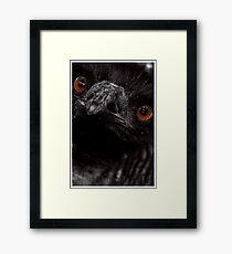 Bitter Framed Print