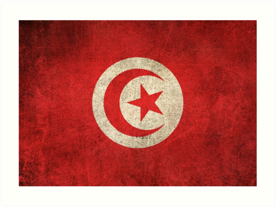 Old and Worn Distressed Vintage Flag of Tunisia by jeff bartels