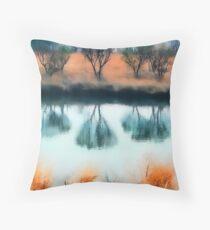 Winter Salt Marsh Throw Pillow