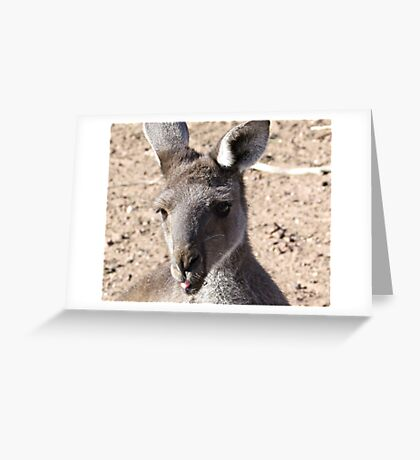 Rude Kanga Greeting Card