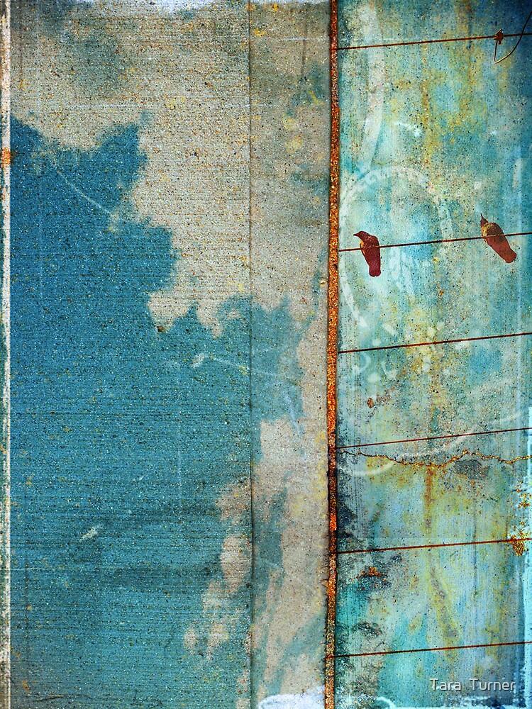 The Concrete Sky by Tara  Turner