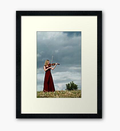 Nature Violin 03 Framed Print