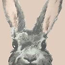 Bunny by DesignsByDebQ