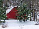 Red Barn on a Snowy Day by FrankieCat