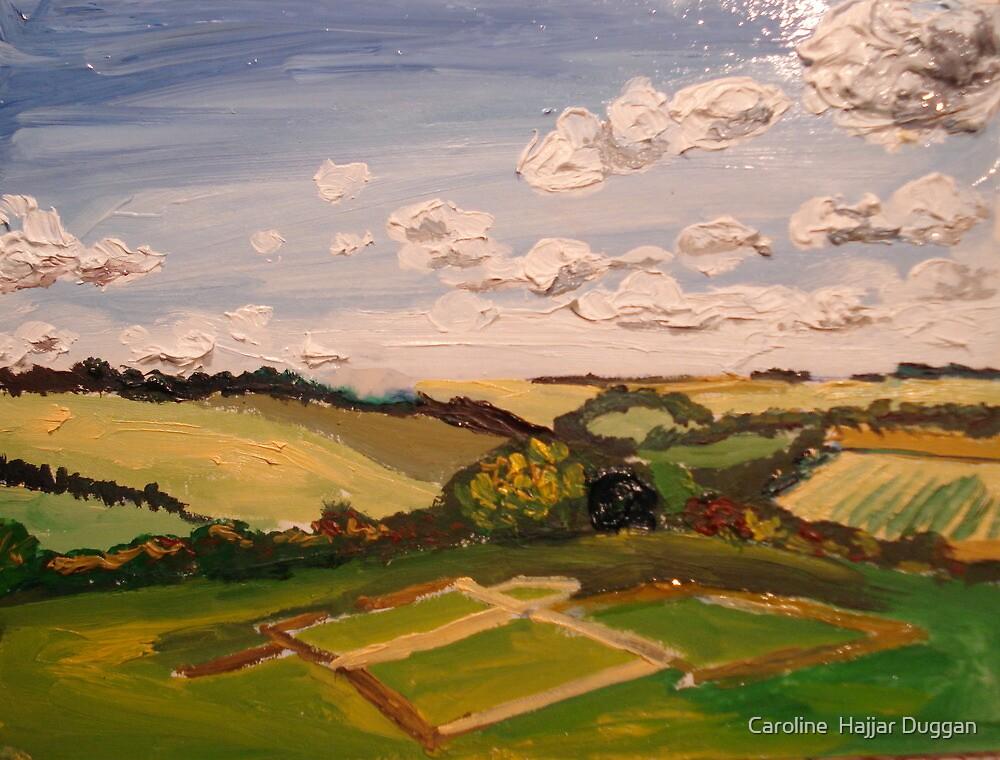 salisbury field by Caroline  Hajjar Duggan