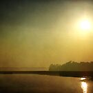 Morning Haze by Jonicool