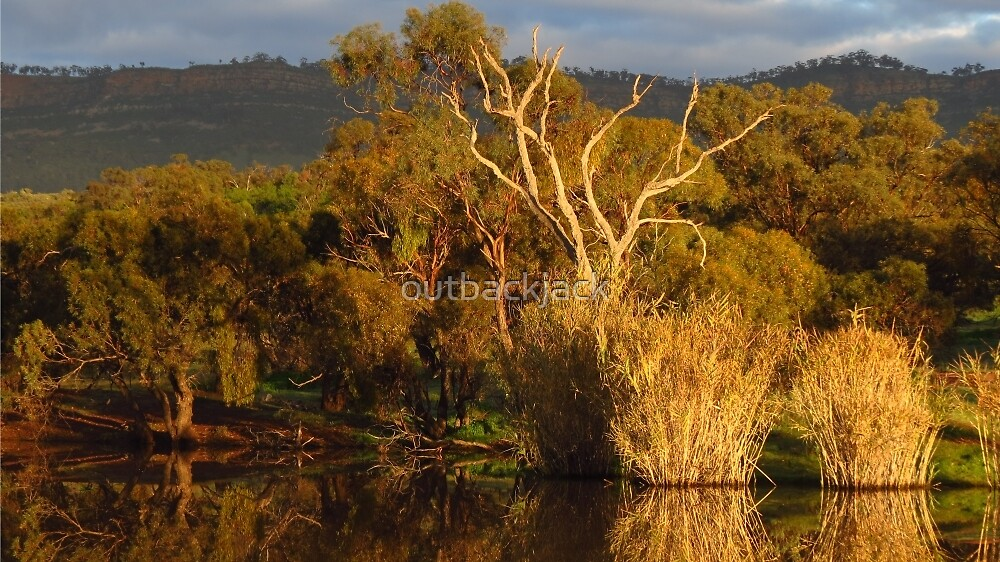 Flinders Ranges Winter Reflection by outbackjack