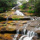 Katoomba Cascades by Penny Smith