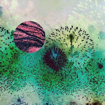 Fireworks 1 by seventeen