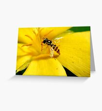 busy visitor Greeting Card