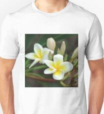 franjipani - from bud to bloom T-Shirt