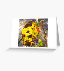 Its a jungle out there Greeting Card