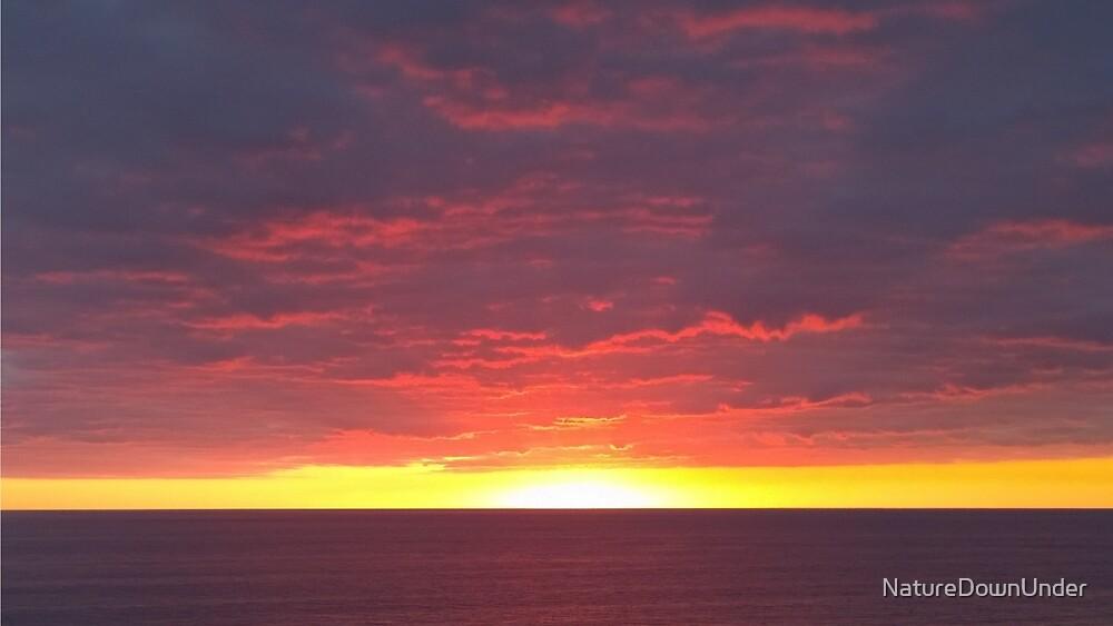 Golden Sunset by NatureDownUnder