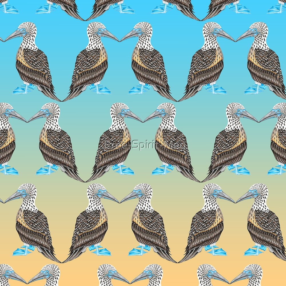 Blue Footed Booby Pattern by Free-Spirit-Meg
