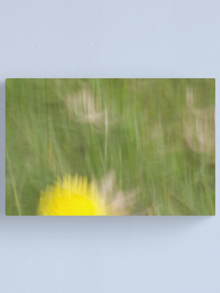 Alternate view of Dandelion Canvas Print