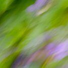 Violets by Lynn Wiles