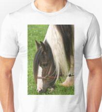 Gypsy Vanner Horse T-Shirt