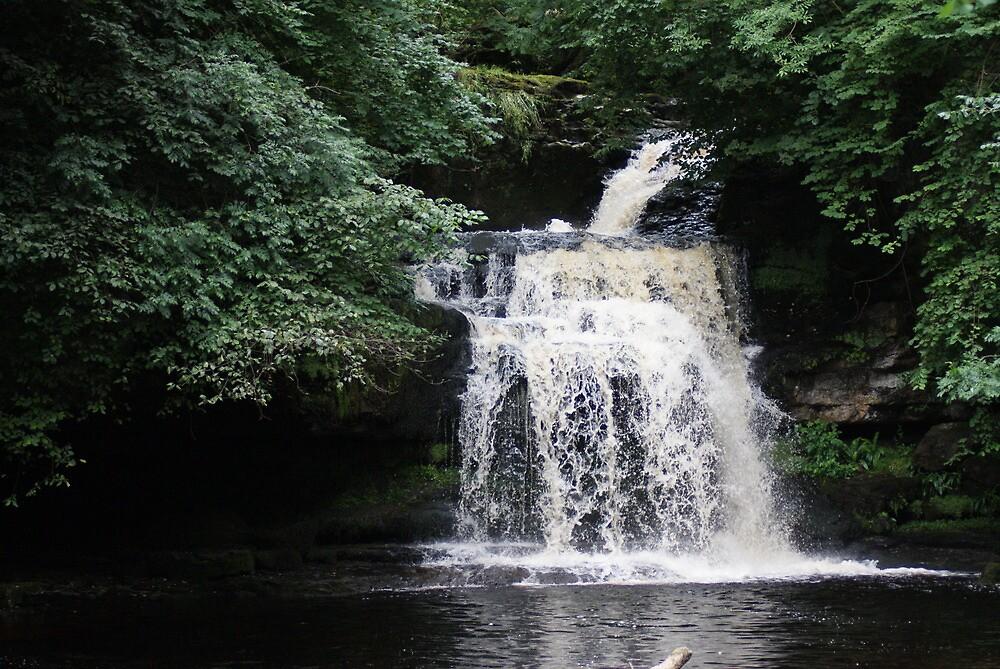 West Burton Falls by Hardabit